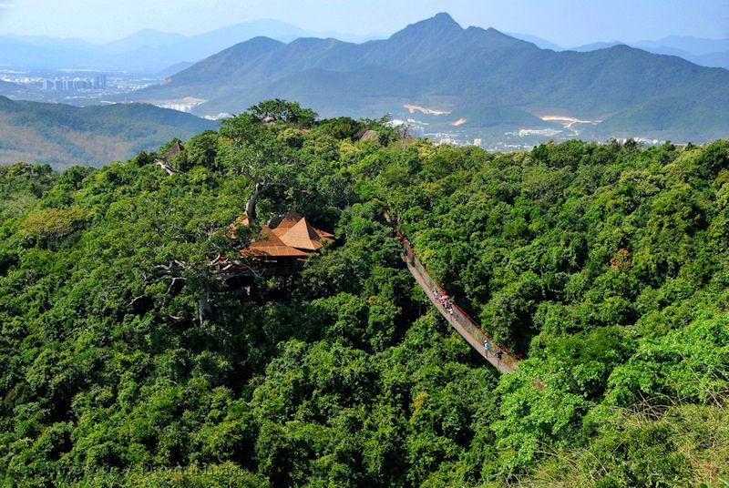 Hainan, forest, view, mountains