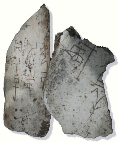oracle bone, shang dynasty, early writing