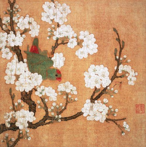 pear blossom, parrot, bee
